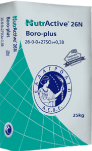 NutrActive boro-plus